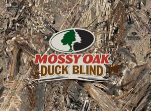 mossyoak_duckblind